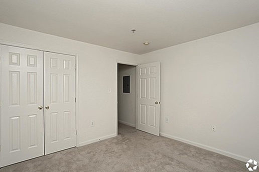 Carpeted bedroom with double door closet