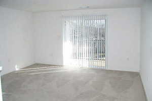 Carpeted living area with sliding glass doors