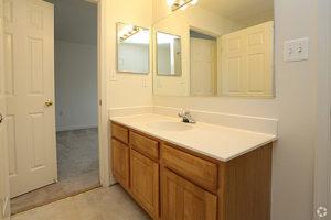 Wide bathroom vanity with sick, cabinets, mirror and medicine cabinet