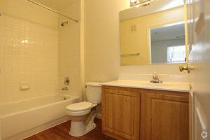 Wood floored bathroom with vanity, toilet and bathtub/shower combo