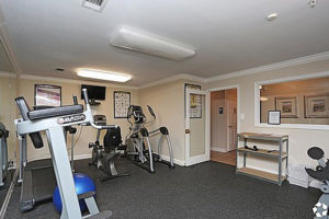 Gym with several workout machines